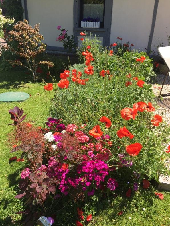 Massif de fleurs près de la terrasse du Fournil